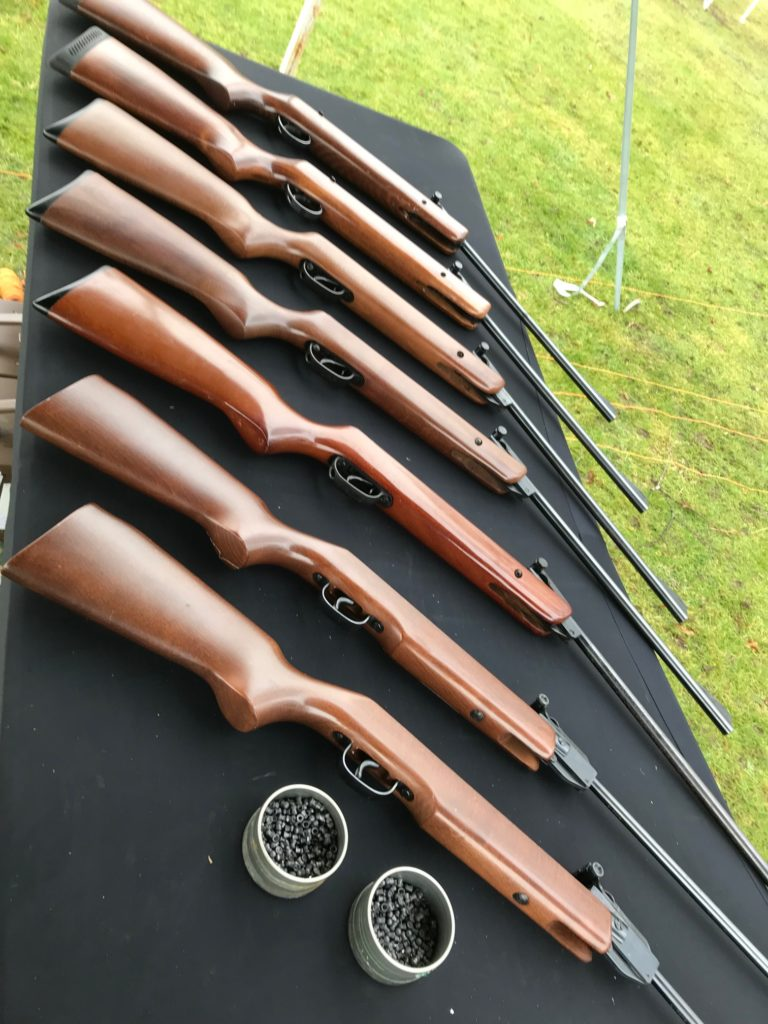Air Rifle and Pistols for a marksman experience.